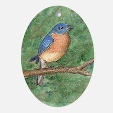 Blue Bird Oval Ornament