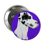 Down Ear Harlequin Great Dane Button