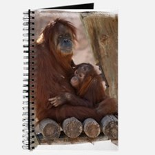 (16) Orang Mother and Child 7374 Journal