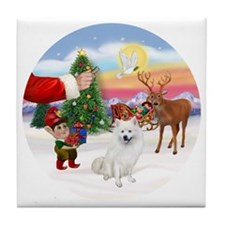 Treat for an American Eskimo Dog Tile Coaster