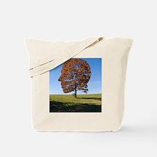 Transcendentalism Tote Bag
