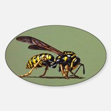 Wasp #2 Decal