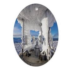 Cairngorm Weather Station Oval Ornament