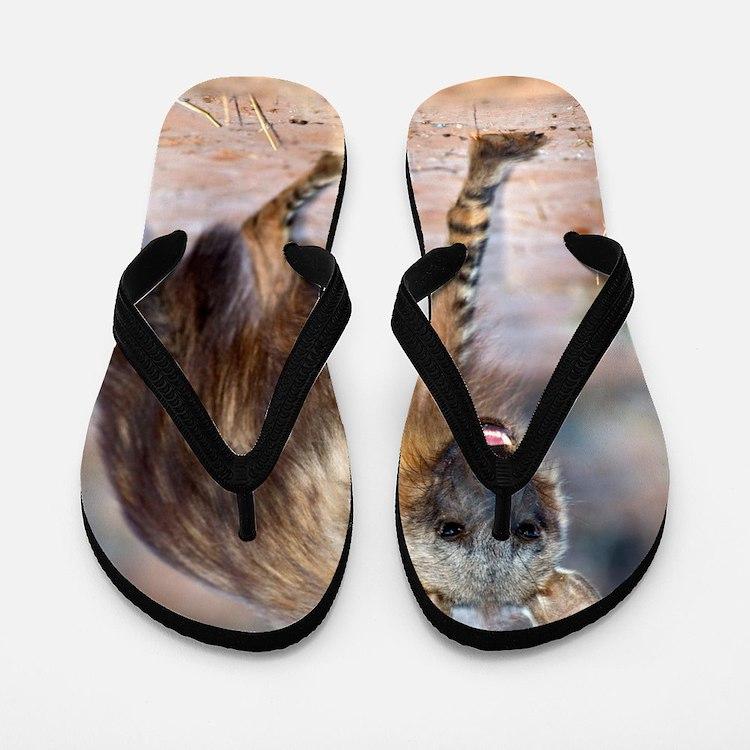 Brown hyena Flip Flops
