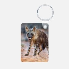 Brown hyena Keychains