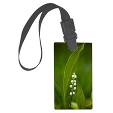 Convallaria majalis (Lily of the Luggage Tag