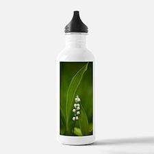 Convallaria majalis (L Water Bottle