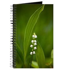 Convallaria majalis (Lily of the Valley) Journal