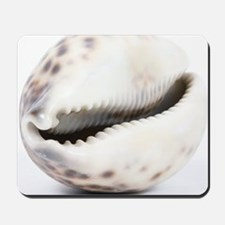 Cowrie shell Mousepad
