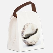 Cowrie shell Canvas Lunch Bag