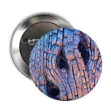 "Burnt tree bark 2.25"" Button"