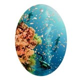 Scuba divers Oval Ornaments