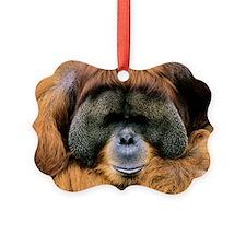 Bornean orangutan Ornament
