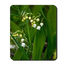 Convallaria majalis (Lily of the Valley) Mousepad