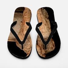 Body cast, Pompeii Flip Flops