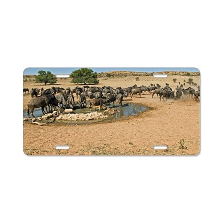 Blue wildebeest Aluminum License Plate