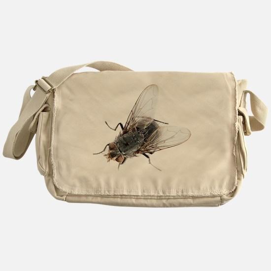 Common house fly Messenger Bag