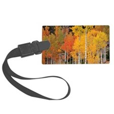 Autumn Aspen trees Luggage Tag