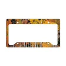Autumn Aspen trees License Plate Holder