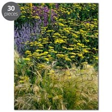 Colourful flower bed Puzzle