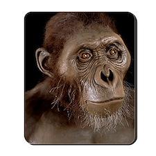 Australopithecus afarensis Mousepad