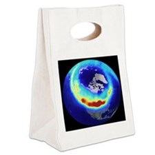 Aurora from space Canvas Lunch Tote