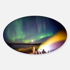 Aurora borealis in Alaska Decal