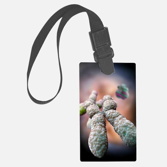 Chromosome, artwork Luggage Tag