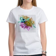 Bacterial ribosome and protein syn Tee
