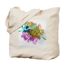 Bacterial ribosome and protein synthesis Tote Bag