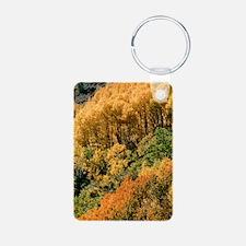 Autumn aspen trees Keychains