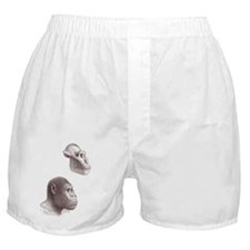 Australopithecus garhi skull and face Boxer Shorts