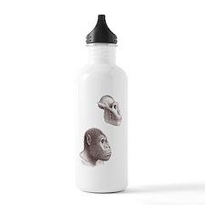 Australopithecus garhi Sports Water Bottle