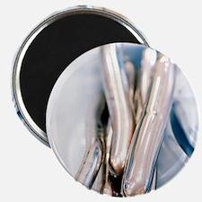Cervical dilators Magnet