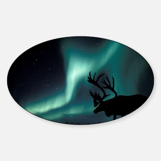 Aurora borealis and caribou Sticker (Oval)