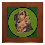 Exquisite Bloodhound Framed Tile