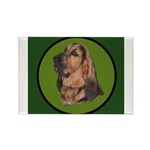 Exquisite Bloodhound Rectangle Magnet (10 pack)