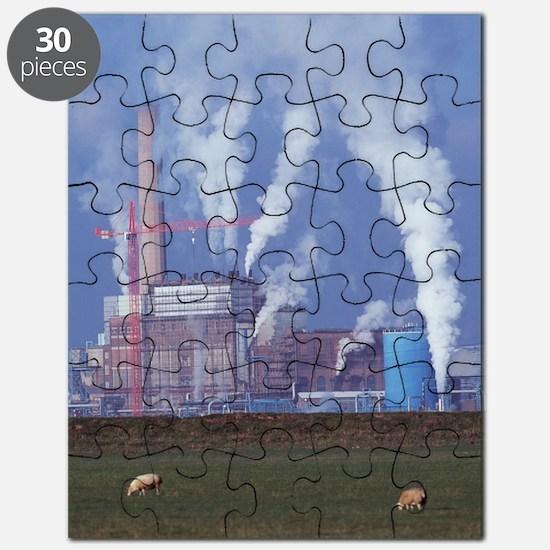 Atmospheric pollution Puzzle