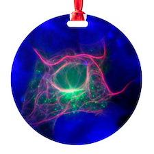 Cell structure, fluorescent microgr Ornament