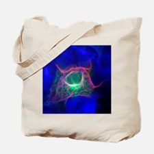 Cell structure, fluorescent micrograph Tote Bag