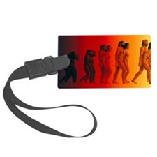 Artwork of the stages in human e Luggage Tag