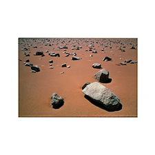 Atacama desert Rectangle Magnet