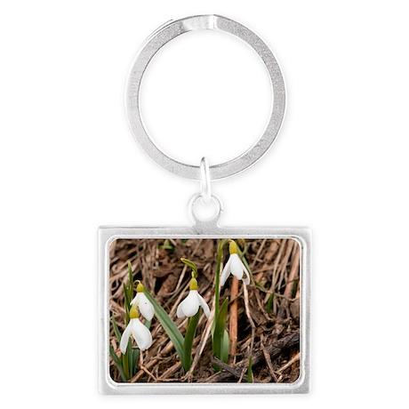 Caucasian Snowdrop (Galanthus c Landscape Keychain