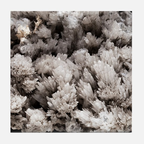 Aragonite Tile Coaster