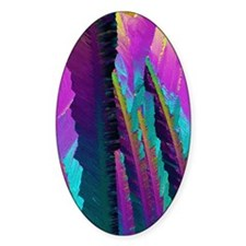 Caffeine crystals, light micrograph Decal