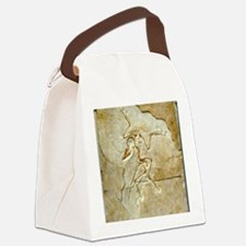Archaeopteryx fossil, Berlin spec Canvas Lunch Bag