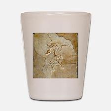 Archaeopteryx fossil, Berlin specimen Shot Glass