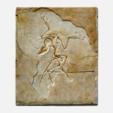 Archaeopteryx fossil, Berlin specime Throw Blanket