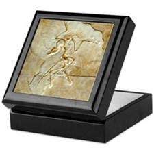 Archaeopteryx fossil, Berlin specimen Keepsake Box