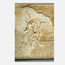 Archaeopteryx fossil, Ber Postcards (Package of 8)